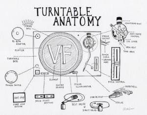 Anatomie Platine