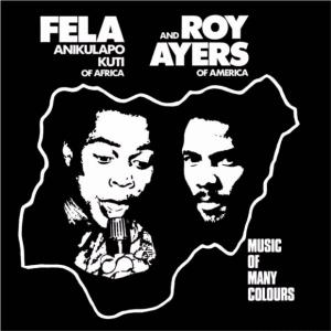 Fela Kuti Roy ayes disquaire day